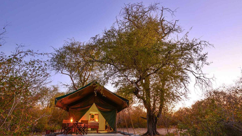 Botswana Moremi Game Reserve