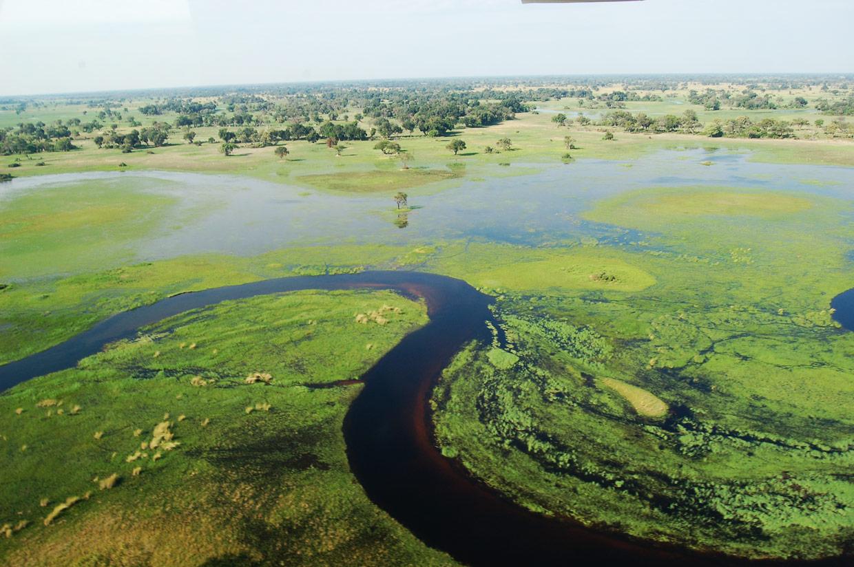 Botswana Delta Okavango
