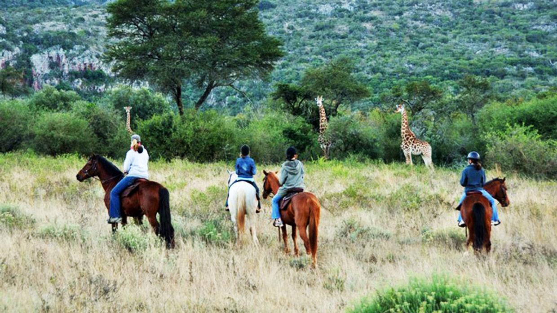 Safari a Cavallo nella riserva Leshiba Wilderness
