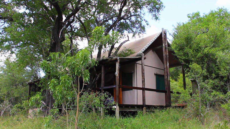 Il lussuoso campo tendato di Chapungu