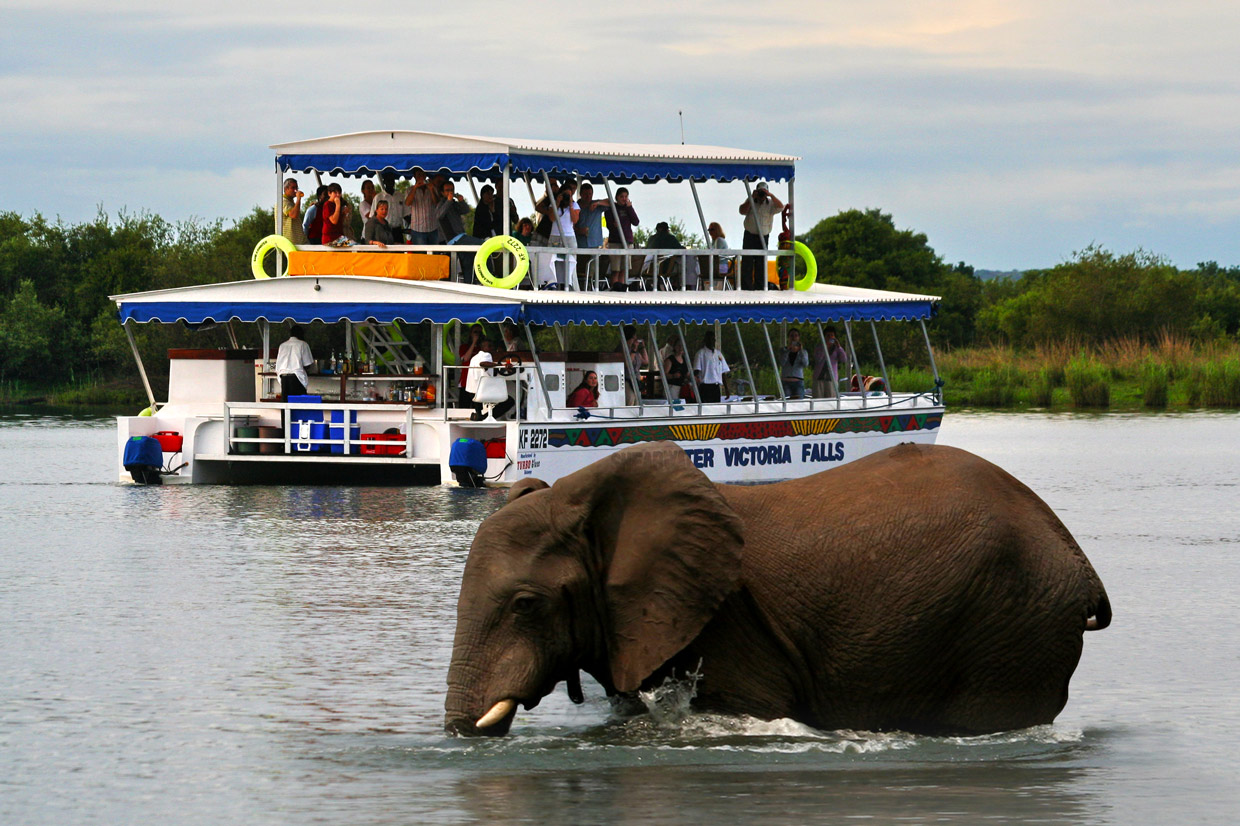 Victoria Falls Cruise on the Zambesi river