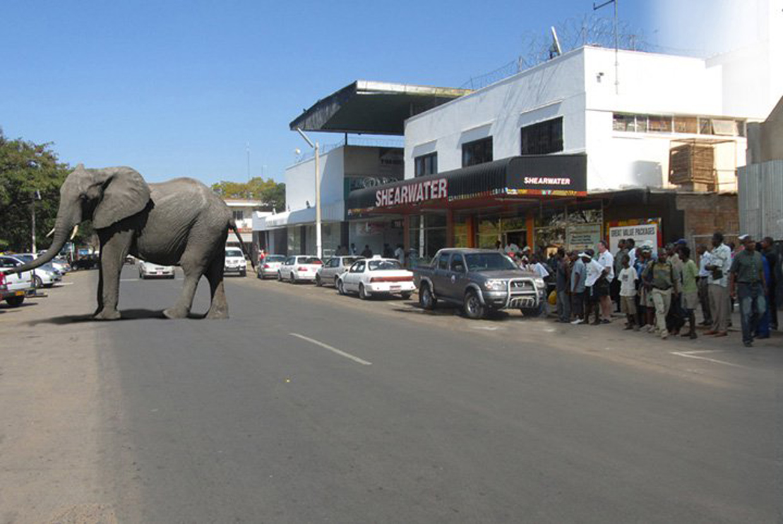 La caratteristica cittadina di Victoria Falls