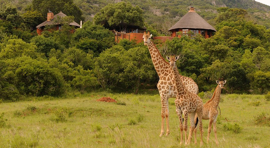 rinomati siti di incontri Sud Africa