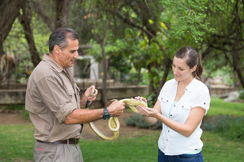 Kinyonga Reptil Park