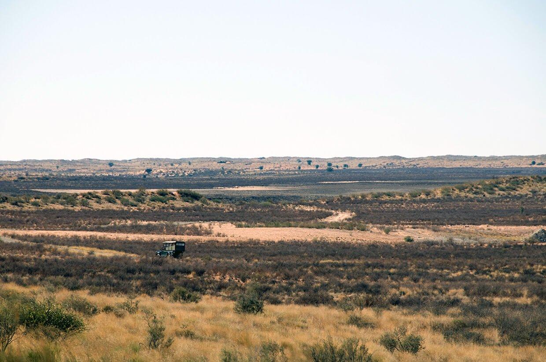 Kgalagadi Park