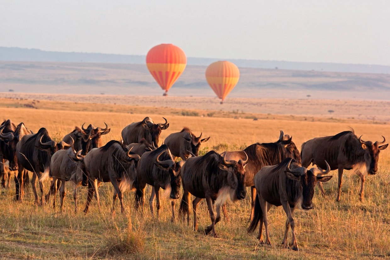 Tanzania Serengeti Explorer Camp
