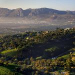 Winelands in Sudafrica