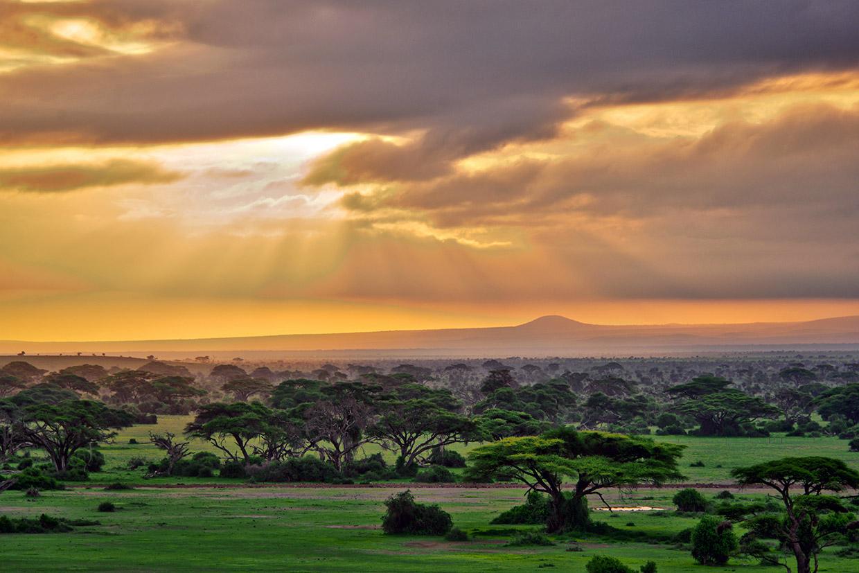 Kenya Amboseli Kilimanjaro