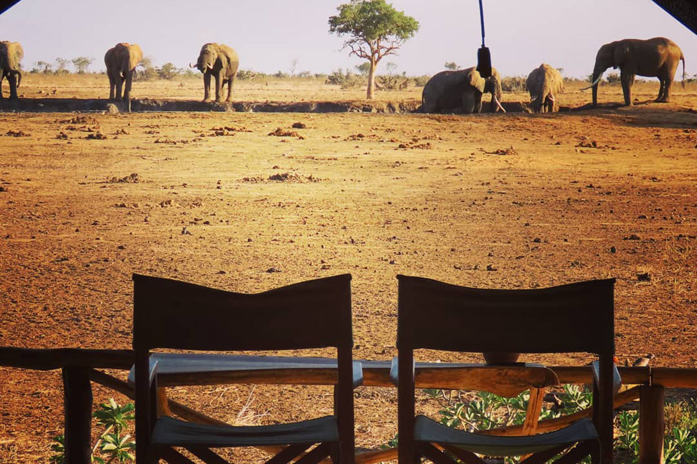 Kenya Satao Camp Tsavo Est