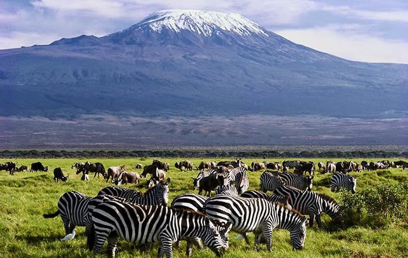 Parco Amboseli in Kenya